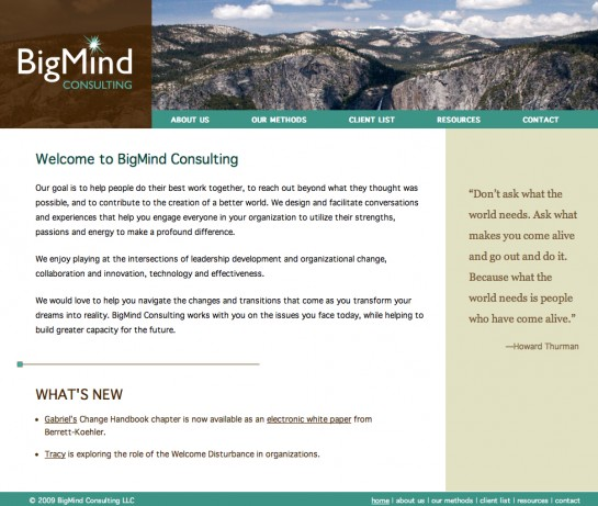 web design & development for BigMind Consulting