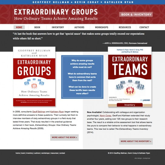 web design & development for Extraordinary Groups